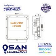 Proyector Led 30w Gold PRO 1700K medidas